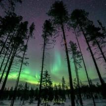 10_02_2017_finlandia